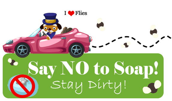 No SOAP